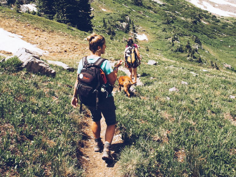 Two people hiking with a dog