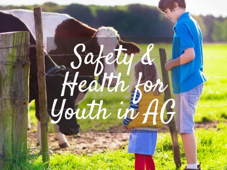 National Farm Safety and Health Week: Safety and health for youth in ag